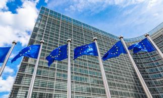 Organismele UE de reglementare ar putea interveni pe pieţele financiare pe fondul intensificării activităţii investitorilor de retail