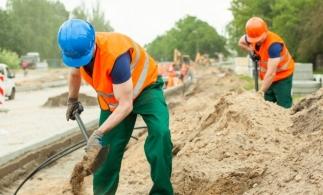 Consiliul Concurenței investighează piața materialelor de construcții