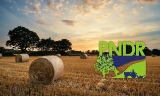AFIR: Peste 37 milioane euro din PNDR 2020, de la sfârșitul lunii iulie, pentru grupurile de producători și asigurarea producției agricole