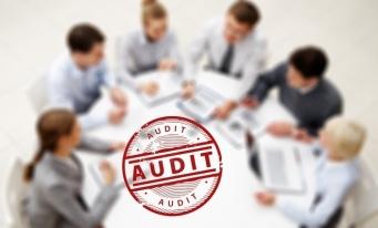 Regulamentul privind auditul de calitate în domeniul serviciilor contabile, dezbătut la filiala Alba (I)