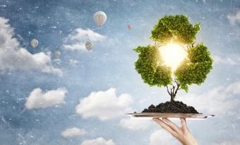 CECCAR Mureș: dezbateri pe tema gestiunii deșeurilor