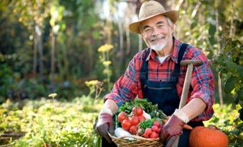 Modificări în acordarea rentei viagere agricole