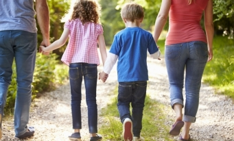 Executivul pregătește modificarea Legii privind procedura de adopție