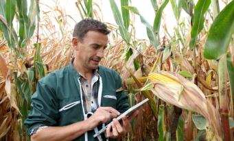 Mai puțin de 10% dintre fermierii români au vârsta de până la 40 de ani