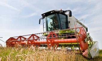 România, a opta putere agricolă a UE în 2018