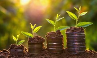 Finanțarea tranziției către o economie verde: investiții de minimum 1.000 de miliarde de euro