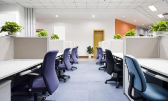 Analiză JLL: Cererea de spații de birouri a crescut cu 18% în 2019