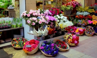 Afacerile cu flori vor creşte în 2020 cu aproximativ 15%