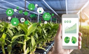 Digitalizarea agriculturii poate aduce beneficii considerabile fermierilor și consumatorilor într-un interval scurt de timp