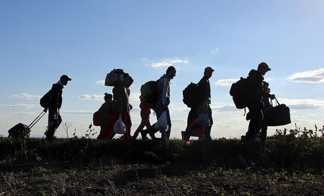 Noi reacții la fenomenul migrației