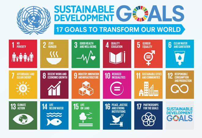 Rolul profesiei contabile în îndeplinirea obiectivelor de dezvoltare durabilă la nivel mondial
