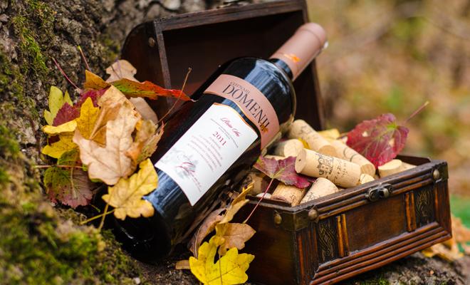 Vinul de Cotnari, propus de UE să devină produs cu indicație geografică protejată în China