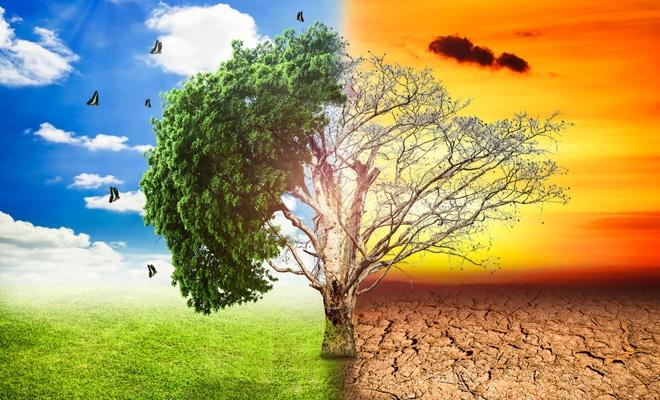 Preşedintele SMR: Schimbările climatice nu sunt o poveste inventată; dezastrele naturale duc la pierderi economice majore