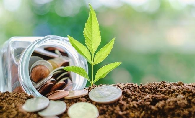 MADR: Credite mai avantajoase pentru fermieri prin Împrumutul cu partajarea riscului la nivel de portofoliu, finanţat din PNDR