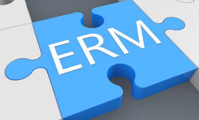 Raportul IFAC privind Rolul contabililor în gestionarea eficientă a riscurilor în întreprinderi, disponibil pe site-ul CECCAR