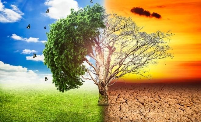 Semnal de alarmă al unor bănci centrale faţă de pericolele şi riscurile financiare provocate de schimbările climatice