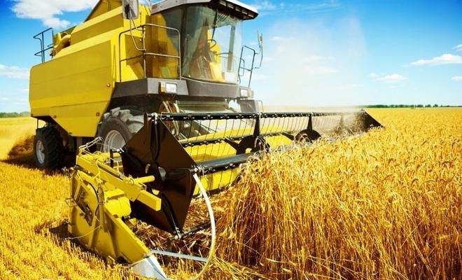 Cifra de afaceri a firmelor din sectorul agricol va scădea cu circa 15% în acest an