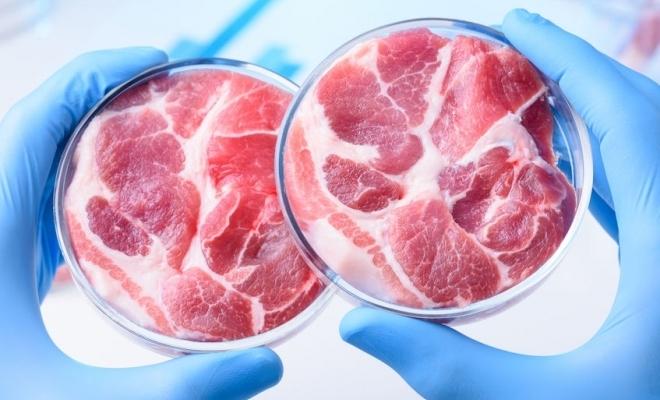 Singapore este prima ţară care aprobă vânzarea de carne crescută în laborator