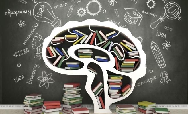Barometru: 48% dintre cetăţeni consideră că sistemul de educaţie este performant