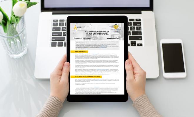 Gestionarea riscurilor în IMM-uri: Insolvența, document elaborat de Accountancy Europe, disponibil în limba română