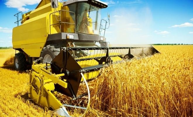 Ministrul Agriculturii: Toate programele de sprijin aflate în derulare, care sunt bugetate, aprobate prin legi şi notificate, vor fi continuate