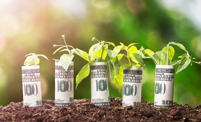 """Emisiunile de obligaţiuni """"verzi"""" au trecut de 200 de miliarde de dolari în acest an"""