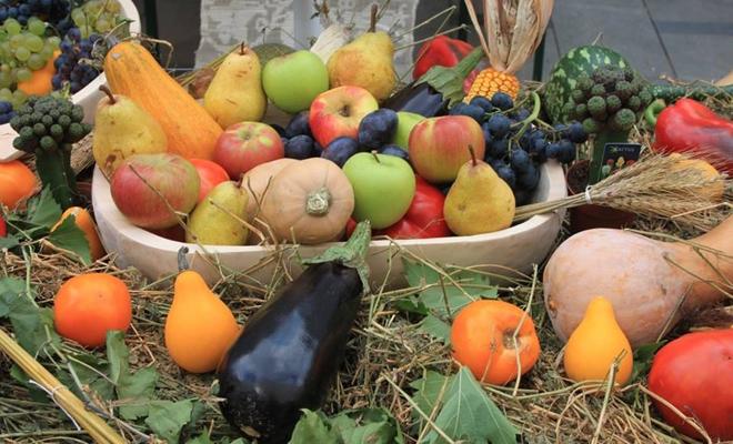 Ministerul Agriculturii intenționează să creeze o rețea națională de colectare a produselor agricole