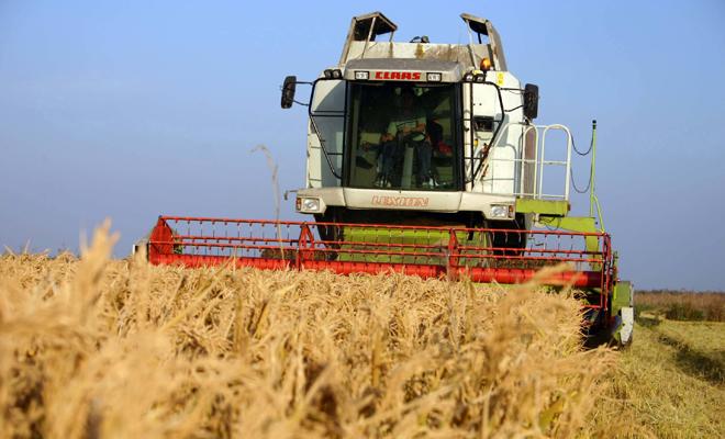 APIA: 23 octombrie, termenul-limită de depunere a cererilor în cadrul măsurii de sprijin temporar cu caracter excepţional acordat fermierilor şi IMM-urilor care au fost afectate în mod deosebit de criza COVID-19