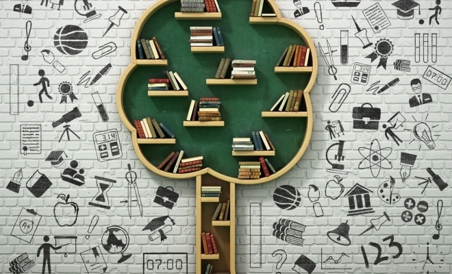 MEC lansează sesiunile online Educaţia Continuă
