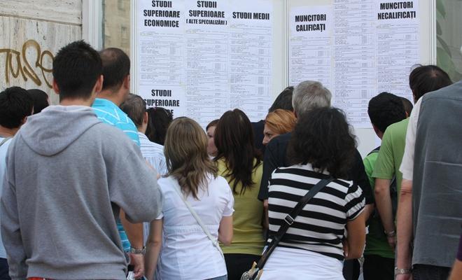 Peste 200.000 de persoane angajate prin intermediul ANOFM, în primele zece luni