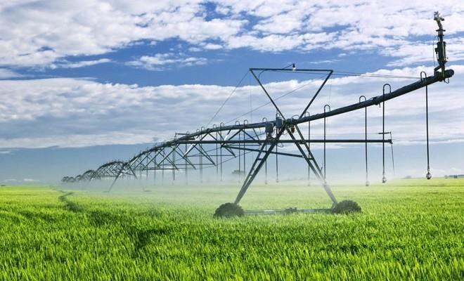 Ministrul Agriculturii: Un sistem de asigurare sustenabil, soluția pentru culturile afectate de vremea nefavorabilă