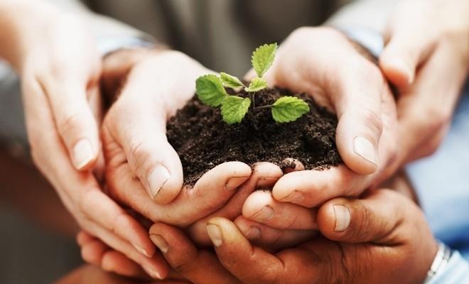 ANOFM: Luna mai este luna promovării economiei sociale