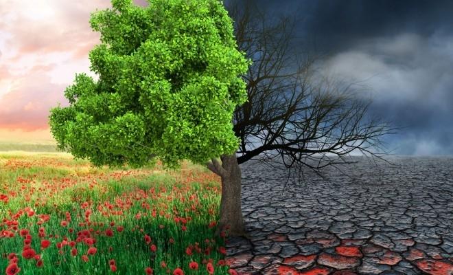 Sondaj Eurobarometru: În opinia europenilor, schimbările climatice reprezintă problema cea mai gravă cu care ne confruntăm în prezent