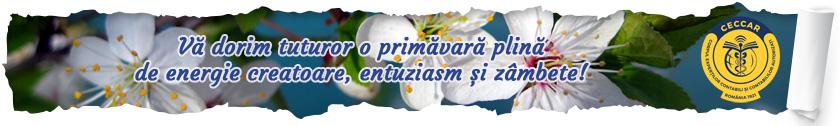 Vă dorim tuturor o primăvară plină de energie creatoare, entuziam și zâmbete!
